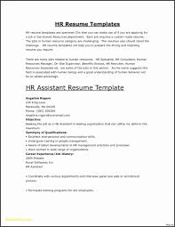 Sample Resume Template Resume Templates Server Resume Template Server Resume Format 27