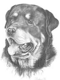 Small Picture Rottweiler Graphics and Animated Gifs PicGifscom