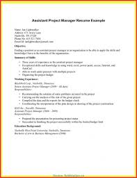 Assistant Project Manager Resume Fresh Assistant Project Manager Resume Construction Assistant 12