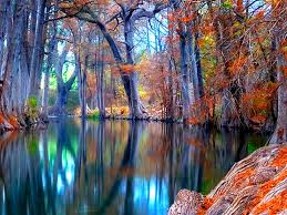 Nature Autumn Stream Backgrounds ...