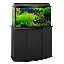 fish tank stand design ideas office aquarium. Fish Tank Stand Design Ideas Office Aquarium. Brilliant Aquatic Fundamentals Gallon Aquarium With