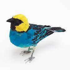 Abigail Browns Birds | Frances Quinn