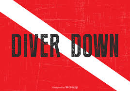 Image result for diver down flag, photos