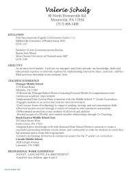 Objective Job Application Resume Job Objective Examples For Resumes