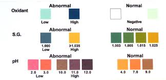 Urine Test Strips Color Chart 51 All Inclusive Abnormal Urine Color Chart