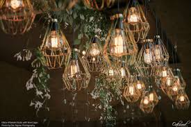 edison filament bulbs with wire cages