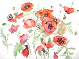flower paintings in watercolour