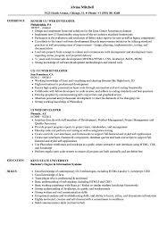 Ui Developer Resume Example UI Web Developer Resume Samples Velvet Jobs 24