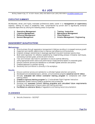 Executive Summary Resume Example Resume Templates