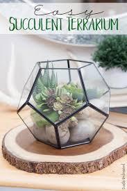easy terrarium diy succulent consumer crafts unleashed 1