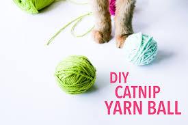 diy craft catnip cat yarn ball legal miss sunshine