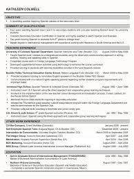 System Knowledge Resume Resume For Your Job Application Business
