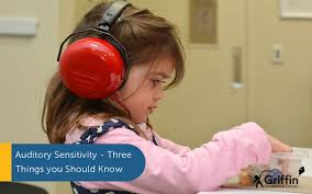 Auditory <b>Sensitivity</b>: Signs, Causes and How to Help - by GriffinOT