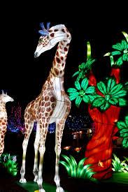 The Biggest Brightest Holiday Lights Lyrics A Tour Of Nashvilles Biggest And Brightest Holiday Displays