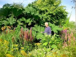 roger brook the no dig gardener gardening transformed you can work on wet soil