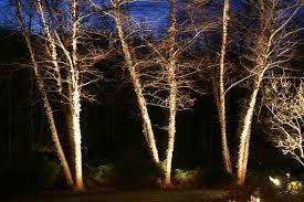 exterior lighting low voltage lighting star lites landscape lighting lanscape lighting design