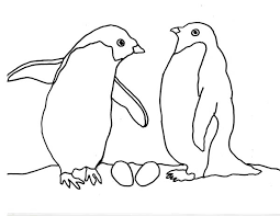 Small Picture Baby Arctic Animals Coloring Pages Apigramcom
