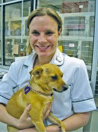 Looking back‐20 years in practice - Watts - 2010 - Veterinary Nursing  Journal - Wiley Online Library