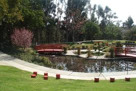 Japanese Garden Theme The Kenneth Hahn State Recreation Park Is A Hidden Gem Of La