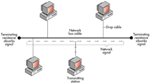 networking primer network topologies micro focus figure 23 thin ethernet network physical bus logical bus