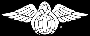 angel of mercy logo