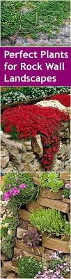 Small Picture The 25 best Rock wall landscape ideas on Pinterest Terraced