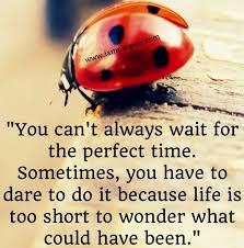 Ladybug Quotes Adorable Time Quote Via WwwIamPoopsie LADYBUG Pinterest Ladybug