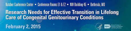 Research Needs for Effective Transition in Lifelong Care of Congenital  Genitourinary Conditions | NIDDK