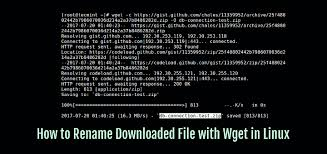 How to Rename File While Downloading with Wget in Linux