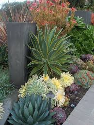 Small Picture Best 25 Modern garden design ideas on Pinterest Modern gardens