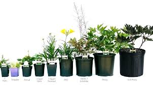 5 gallon plant containers container and tray information pot home depot plastic flower pots