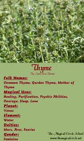thyme tincture uses