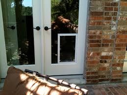 hale pet door in glass