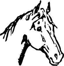 arabian horse head clipart. Exellent Clipart Arabian Horse Horse Head Mask Pony Drawing Line Art With Head Clipart D