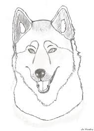 Baby Husky Coloring Pages Cartoon Clip Art Smile Monkey On Really