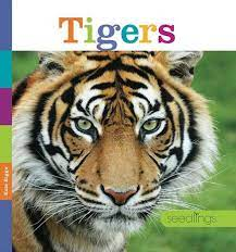 Tigers by Kate Riggs, Paperback | Barnes & Noble®