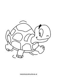 Kleurplaat Schildpad Dieren