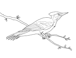 Creation Coloring Pages For Preschoolers Classic Style Free