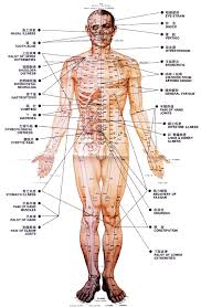 Free Trigger Point Chart 18 Curious Acupressure Points Chart Free Download Pdf