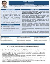 Sales And Marketing Cv Format Sales And Marketing Resume Sample