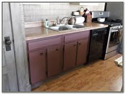 Kitchen Sink Base Cabinets White Kitchen Base Cabinets Monsterlune