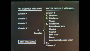 Fat Soluble And Water Soluble Vitamins Chart 1950s Chart With Words Comparing Stock Footage Video 100 Royalty Free 28545538 Shutterstock