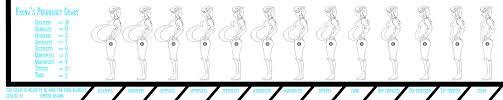 Pregnancy Tummy Size Chart Paradigmatic Pregnant Size Chart New Tylenol Dosage Chart