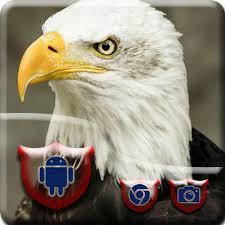 Bald Eagle Vivid Theme Aplikace Na Google Play
