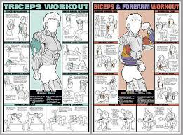 Weight Exercise Chart Free Arm Workout Free Weights Exercises Wall Charts Professional Fitness 2 Poster Set Ebay