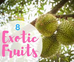 shutterstock this mystery thorned fruit is one of southeast asia s most por fruits