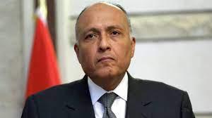 مصر: قرار مجلس الأمن بشأن سد النهضة آخر الحلول السياسية