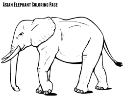 Mother And Baby Elephant Coloring Pages Best Of Asian Elephant
