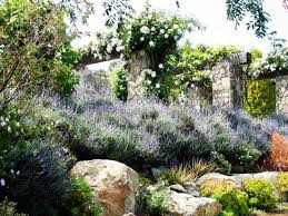 french garden design ideas french country garden garden design