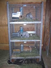 easy diy rabbit cage budget